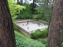 Japanese Garden sand garden